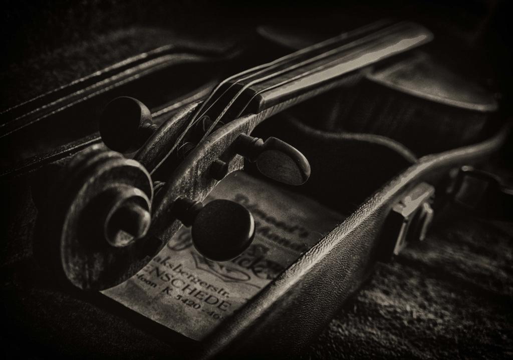 viool 2